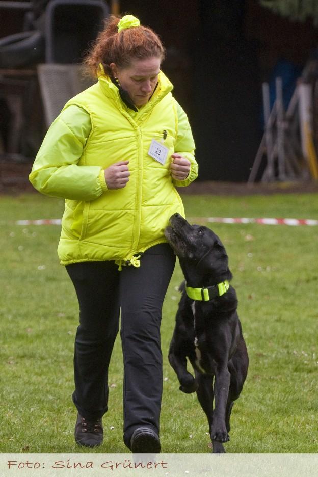 Laufschritt in der Fussarbeit - Mein Engelchen ist einfach ein Traumhund (Foto: Sina Grünert)