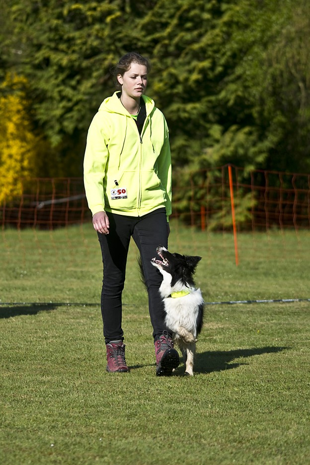 VDH Jugendmeisterschaft Obedience, 2015 - Judith Hinrichs mit Smarty