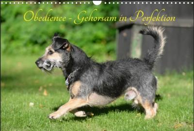 Unser Obedience-Kalender 2016 im Querformat - Jeder Kauf unterstützt unseren Verein - Danke!